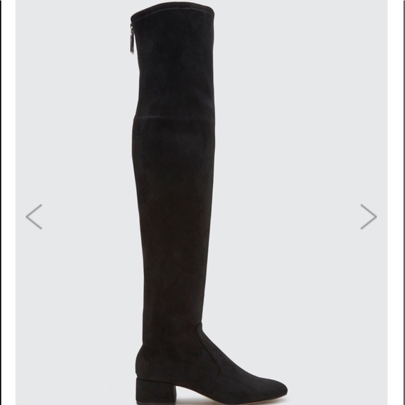 4fc14f884c9 Dolce Vita Shoes - DOLCE VITA Black Stella Suede over the knee boots